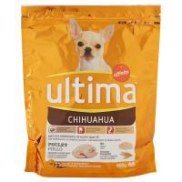 Ultima Dog Chihuahua