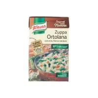 Knorr zuppa ortolana brick