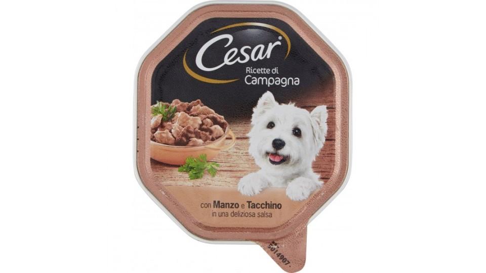 Cesar vaschetta filetti manzo tacchino