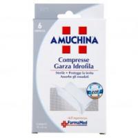 Amuchina Compresse Garza Idrofila