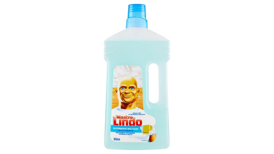 Mastro lindo detergente multiuso limone detersivi e pulizia