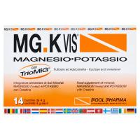 MGK VIS magnesio - potassio in bustine