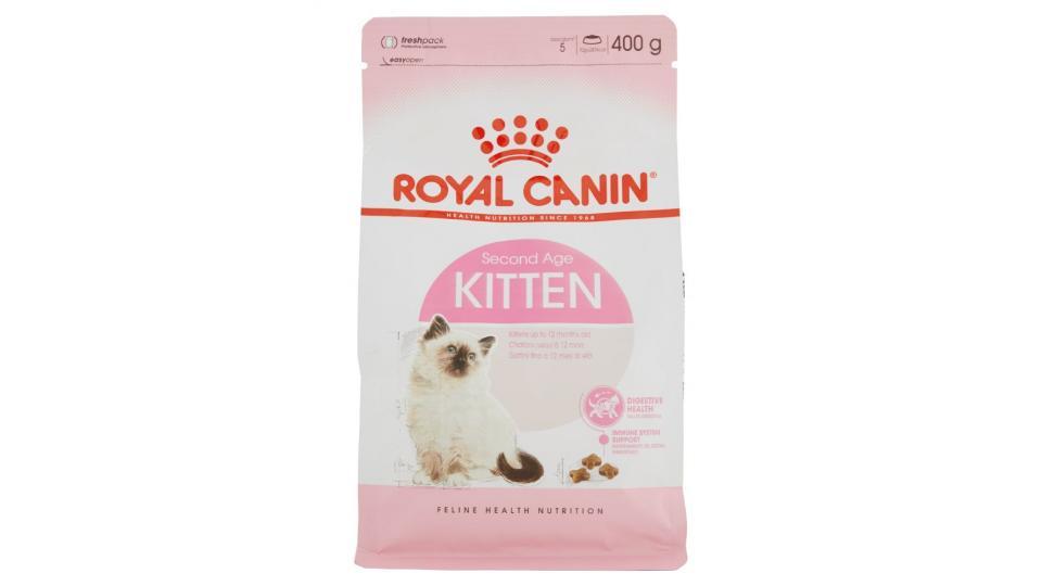 Royal Canin Kitten Gatti Cuccioli Fino A 12 Mesi Di Età Amici