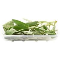 Salvia, confezionata