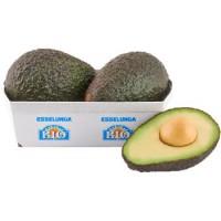 Esselunga Bio, avocado Hass biologico