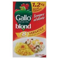 Gallo, Blond riso Versatile