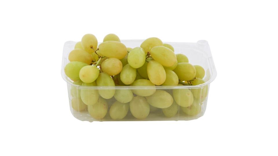 Uva Bianca senza semi
