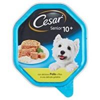 Cesar vaschetta senior pollo riso