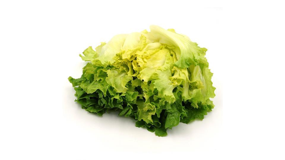 insalata scarola