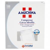 Compresse Garza Idrofila 100 Compresse Formato 10 x 10 Cm