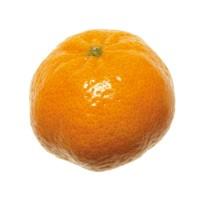 Mandarini Nadorcott Italia