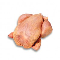 Pollo Busto Halal X4.