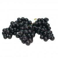uva nera sicilia