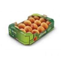 Albicocche italia kg.1