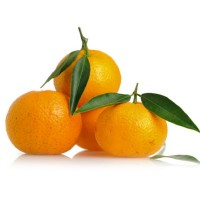 Mandarini senza Semi Orri Affogliato Spagna