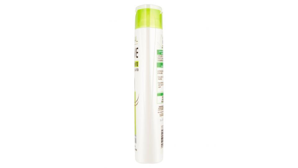 Elvive Energizzante Shampoo delicato capelli normali tendenti ad ingrassarsi