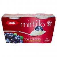 Yogurt Intero Con Mirtilli In Pezzi