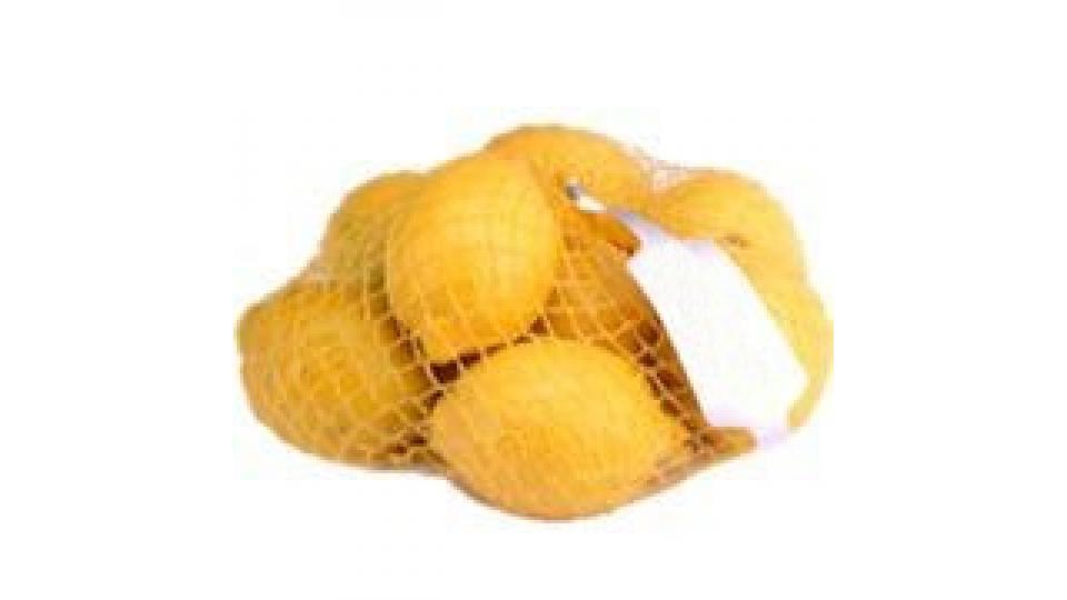 Limoni Calibro 4/5