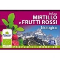 Infuso Frutti Mirtillo Frutti Rossi Filtri Bio