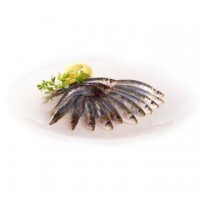Maruzzella sardine