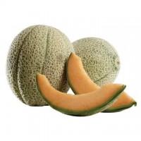 Melone Retato Bio